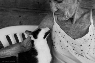 Rénate, bénévole à l'école du chat d'Arles