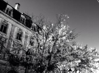 Bordeaux © Nathalie Tiennot