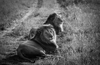 Tanzanie © Nathalie Tiennot, 2003